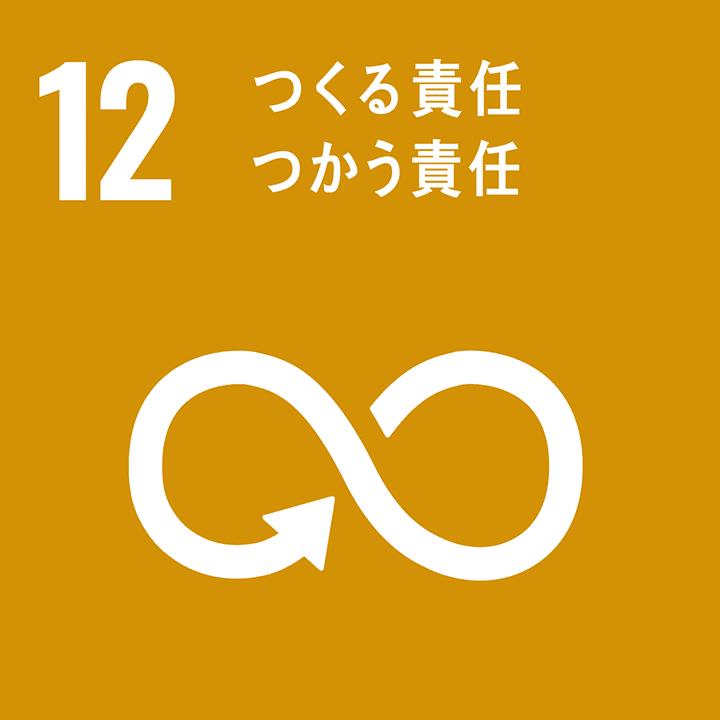 SDGs17のゴール_12