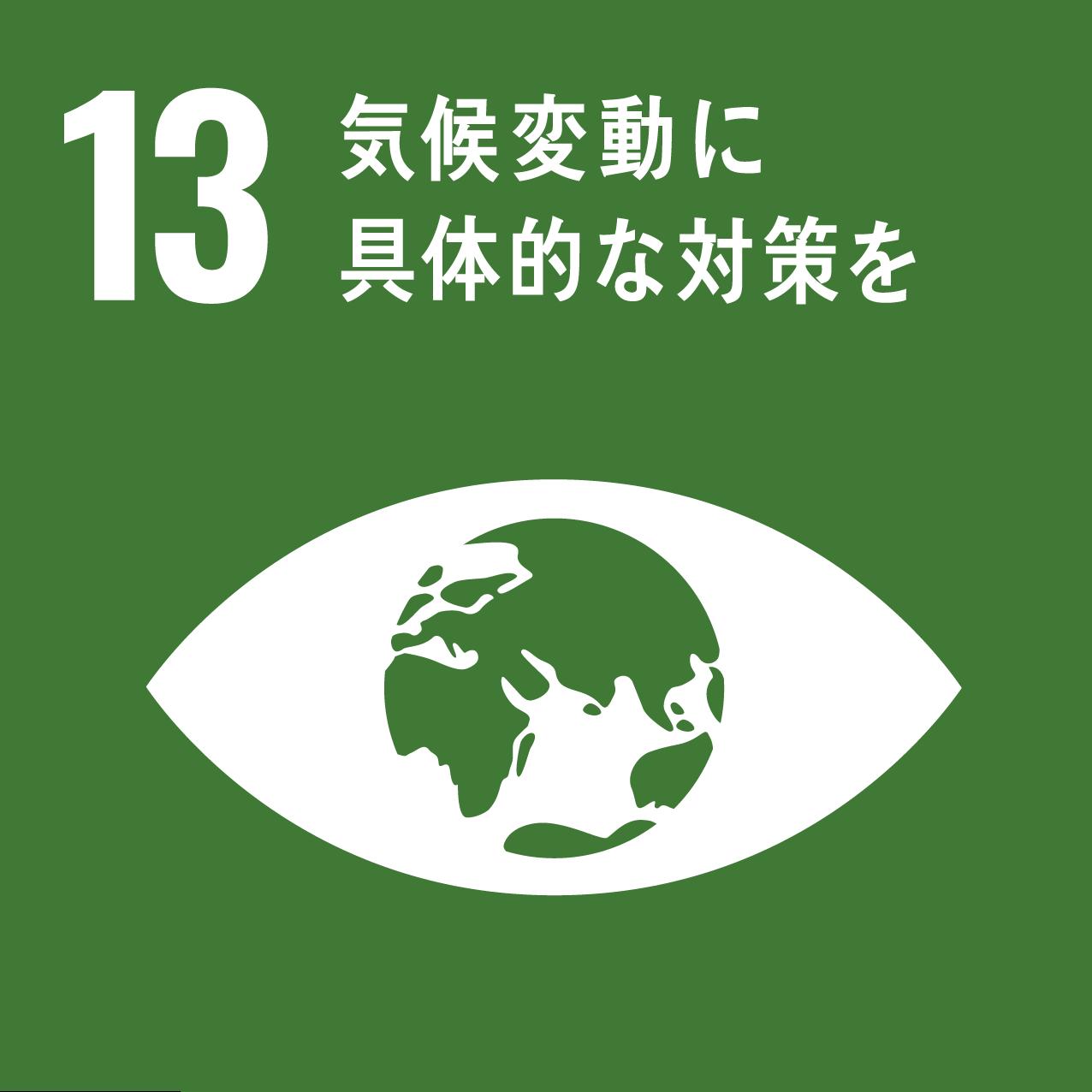 SDGs17のゴール_13
